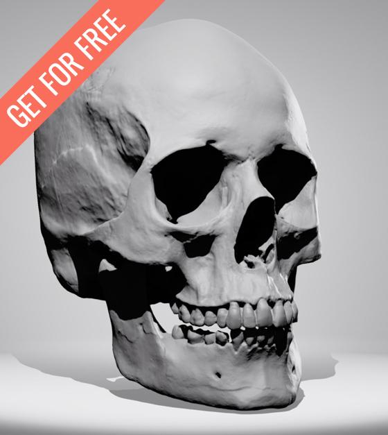 skull-Skethcer-2b