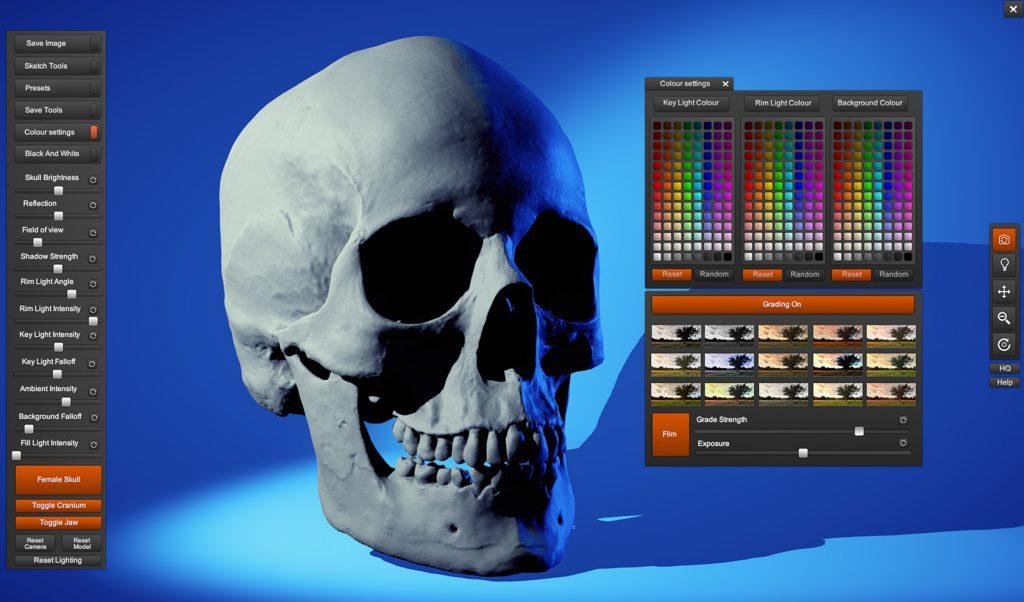 Skull Sketcher 2 - Anatomy 360